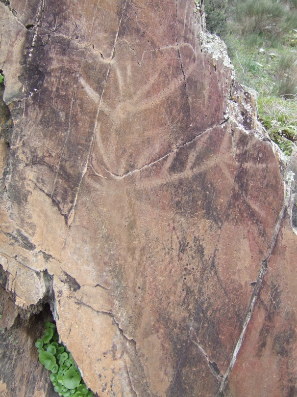 A call to arms to save the largest open air assemblage of upper paleolithic art in europe from - Diy tip of the day what side should decking groves face ...